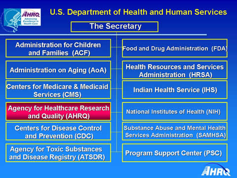 Health and human services research paper