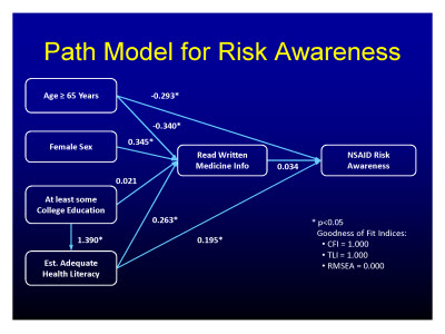 Slide 29. Path Model for Risk Awareness