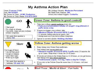Slide 9. Screen shot of My Asthma Action Plan
