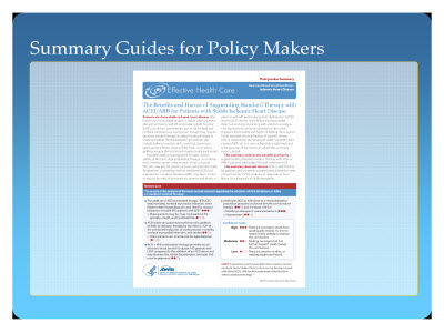 Slide 12. Summary Guides for Policy Makers
