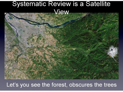 Slide 19. Systematic Review is a Satellite View
