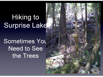 Slide 22. Hiking to Surprise Lake Sometimes You Need to See  the Trees