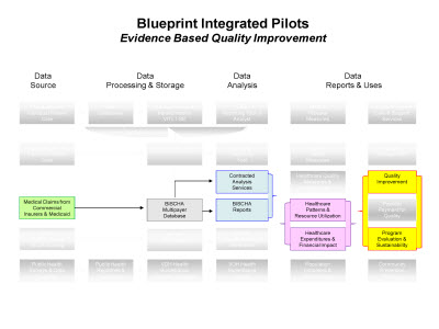 Slide 8. Blueprint Integrated Pilots: Evidence Based Quality Improvement