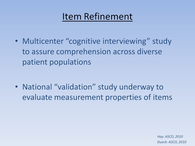 Slide 28. Item Refinement