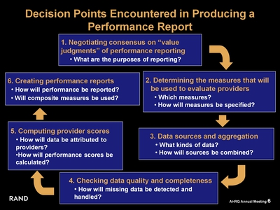 Decision Points Encountered in Producing a Performance Report