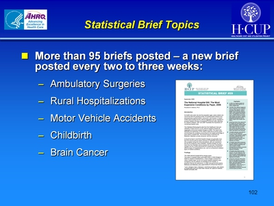 Statistical Brief Topics