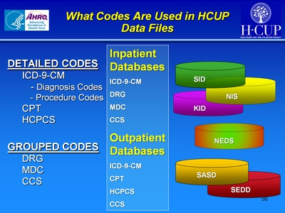What Codes Are Used in HCUP Data Files