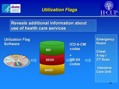 Utilization Flags