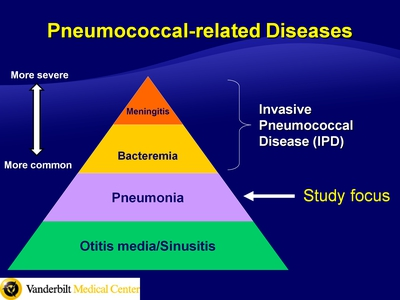 Pneumococcal-related Diseases