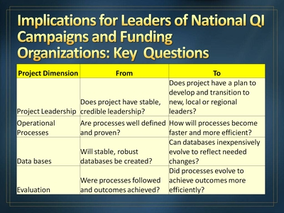 Implications for Leaders of National QI Campaigns and Funding Organizations: Key Questions