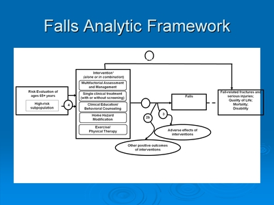Falls Analytic Framework