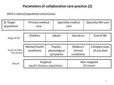 Parameters of collaborative care practice (2)