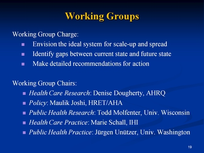 Slide 19. Working Groups