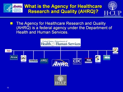 What Is the Agency for Healthcare Research and Quality (AHRQ)?