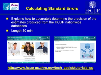 Calculating Standard Errors