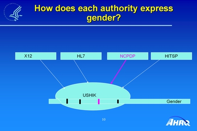 How Does Each Authority Express Gender?