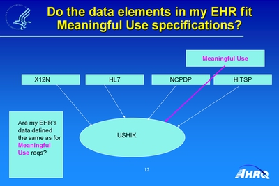 Do the Data Elements in My EHR Fit Meaningful Use Specifications?