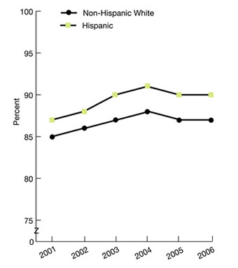 Ethnicity, Non-Hispanic White, 2001, 85%, 2002, 86%, 2003, 87%, 2004, 88%, 2005, 87%, 2006, 87%. Hispanic, 2001, 87%, 2002, 88%, 2003, 90%, 2004, 91%, 2005, 90%, 2006, 90%.